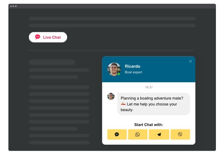 live chat software interface