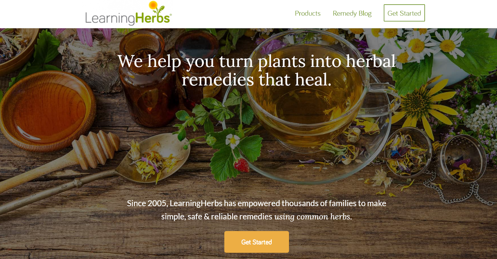 learning herbs interface