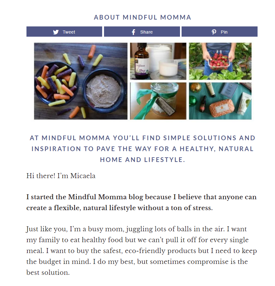 Excerpt from the Mindful Momma blog's About page
