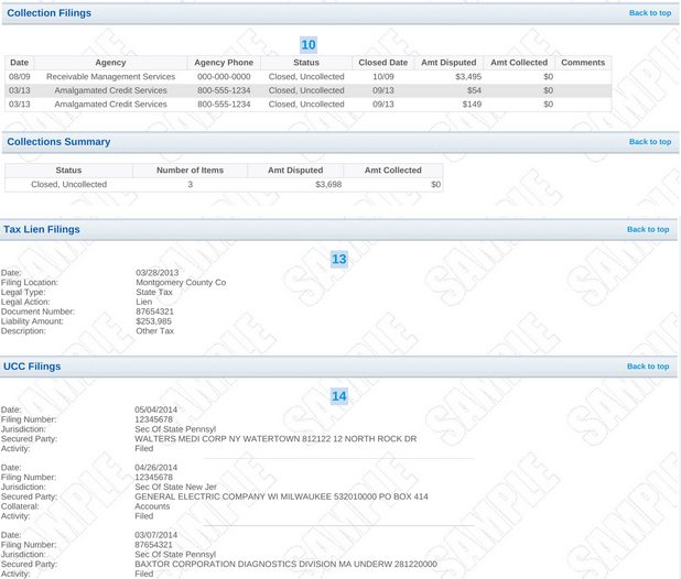 Sample business credit report with UCC filings