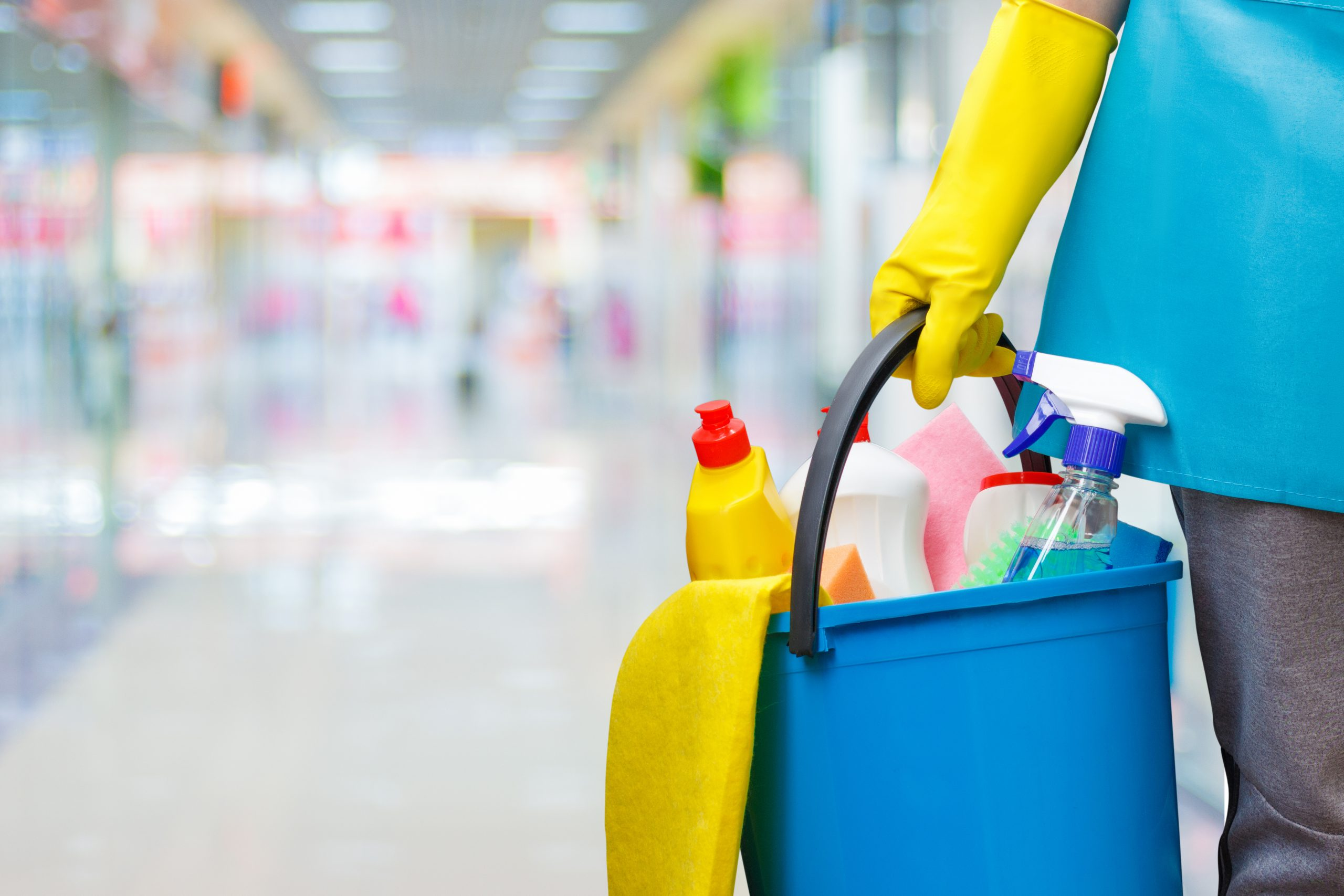 6. Purchase Cleaning Equipment