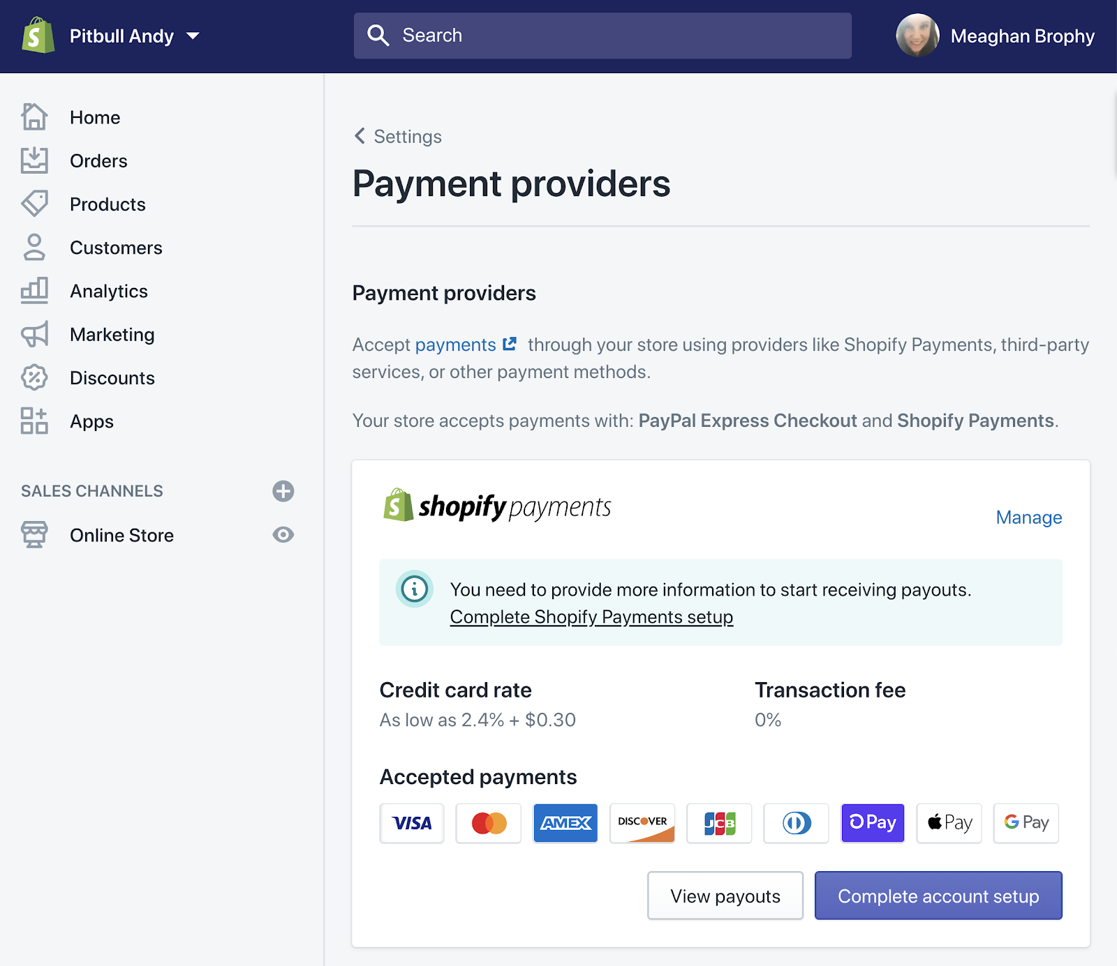 Setting up Payment Providers