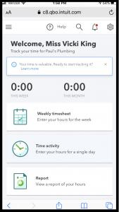 Time Entry via Mobile Web
