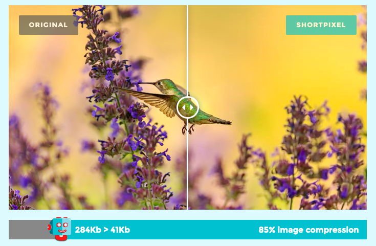 ShortPixel Image Compressor