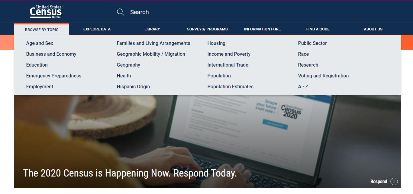 U.S. Census interface