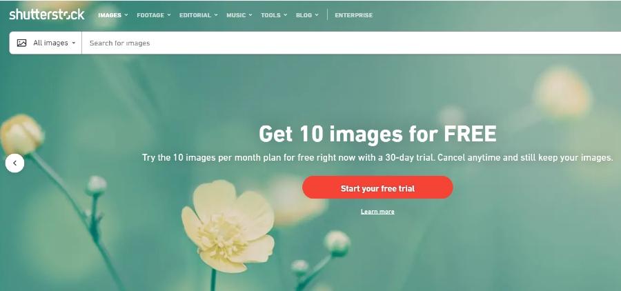 Screenshot of Shutterstock