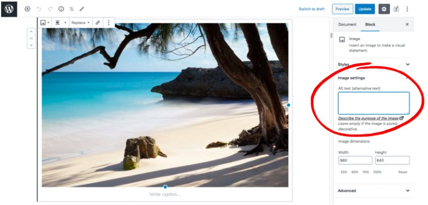 Adding Alt Text to Images in WordPress