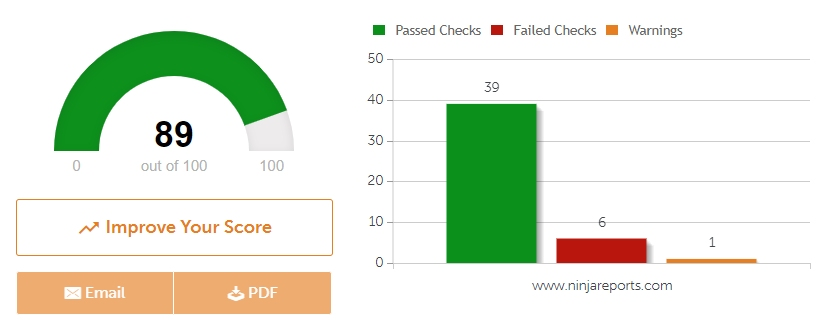 SEO Site Checkup Example by Ninja Reports