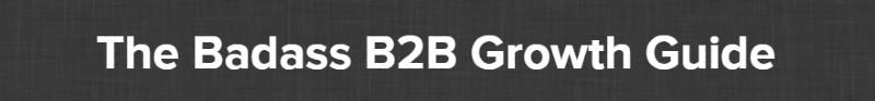 The Badass B2B Growth Guide