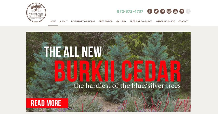 Treeland Nursery website