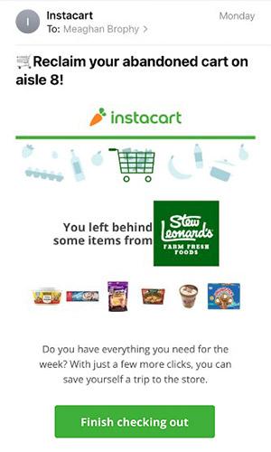 Screenshot of Abandoned Cart Email