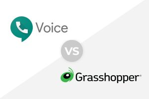 google-voice-vs-grasshopper
