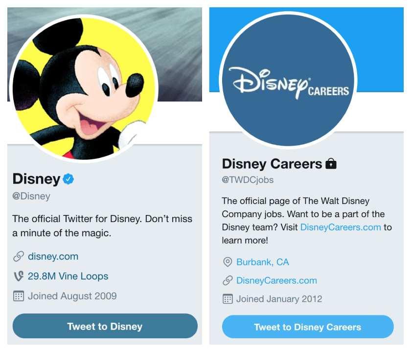 Screenshot of Disney Twitter Accounts