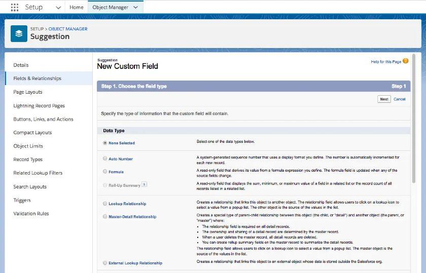 Salesforce Essentials - Custom Fields