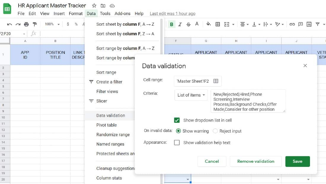 Screenshot of HR Applicant Tracker Data Validation