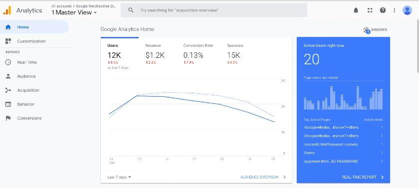 Google Analytics master view