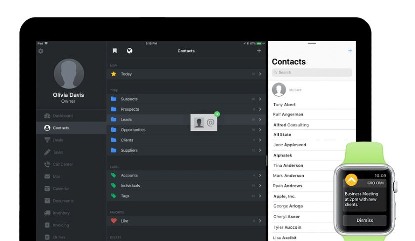 Gro CRM Contact Page with Apple Watch Conversion