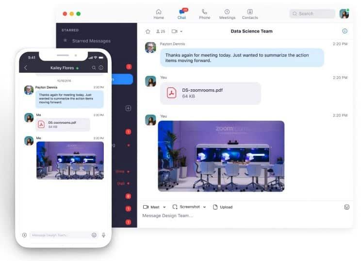 Screenshot of Zoom chat tool