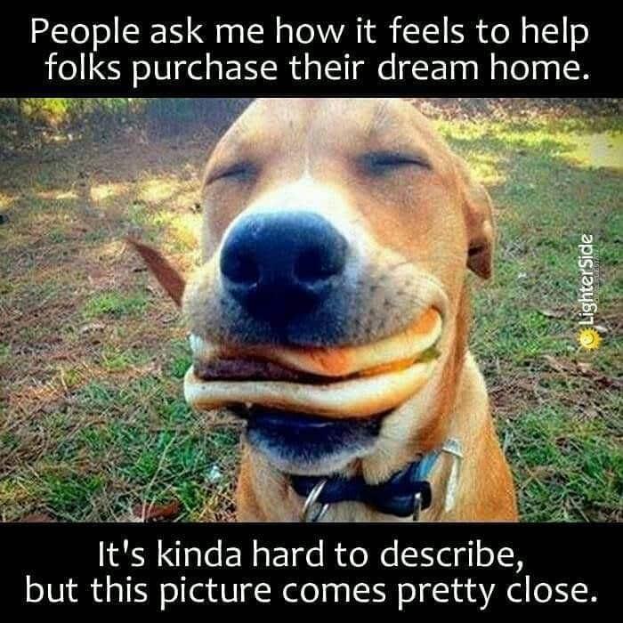Screenshot of Happy Dog Meme