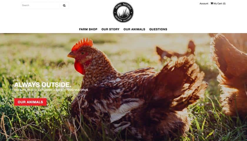 Screenshot of Primal Pastures frontpage