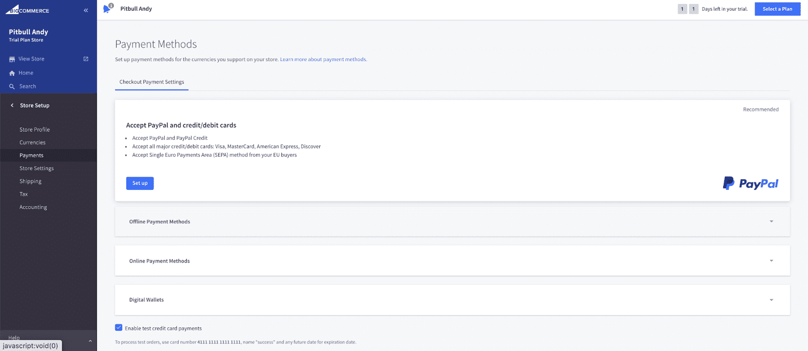 Screenshot of BigCommerce Several Payment Options Available