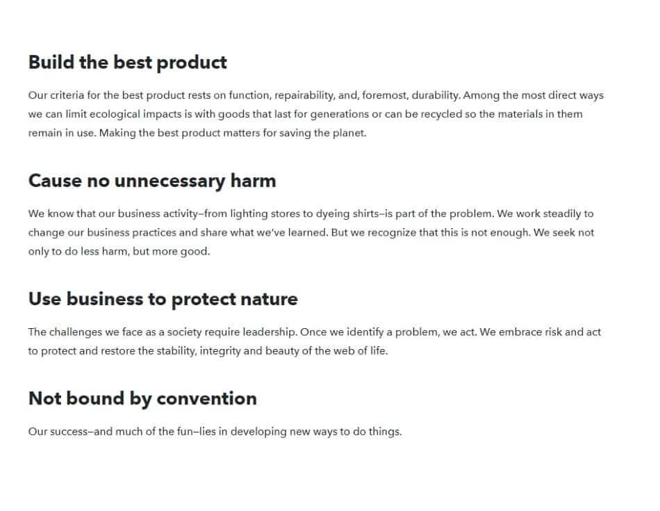 Screenshot of Patagonia Vision Statement
