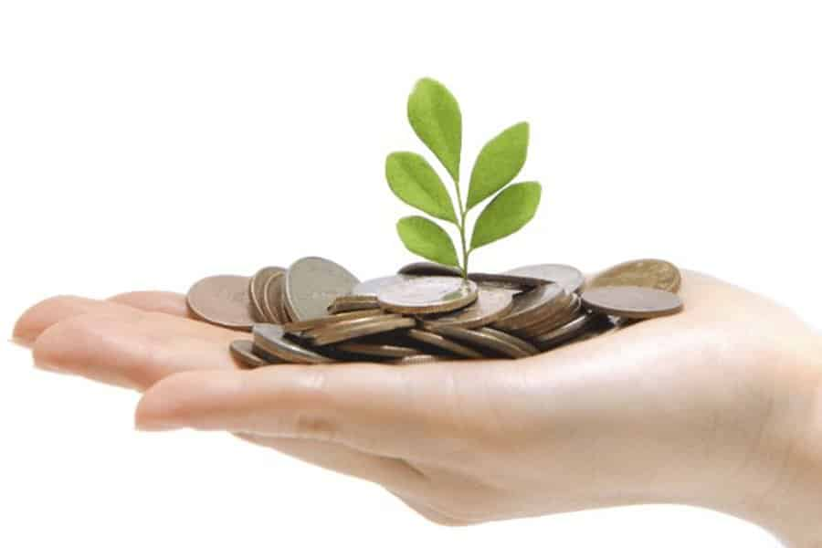 coins and plant on top of a hand