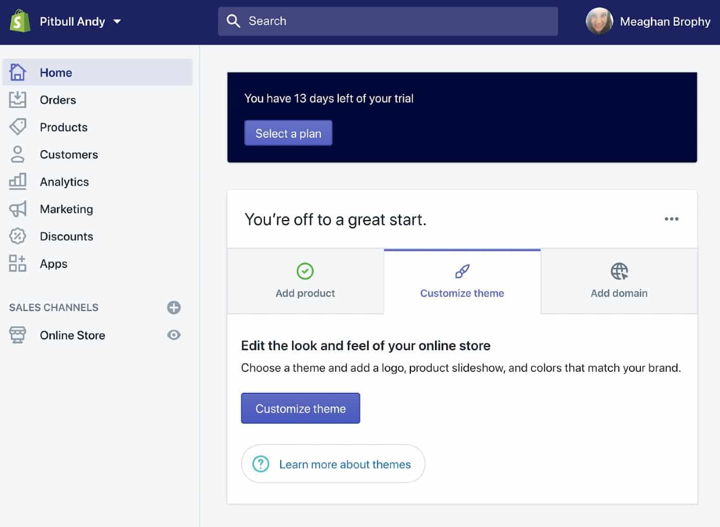 Screenshot of Customize Theme Option on Shopify