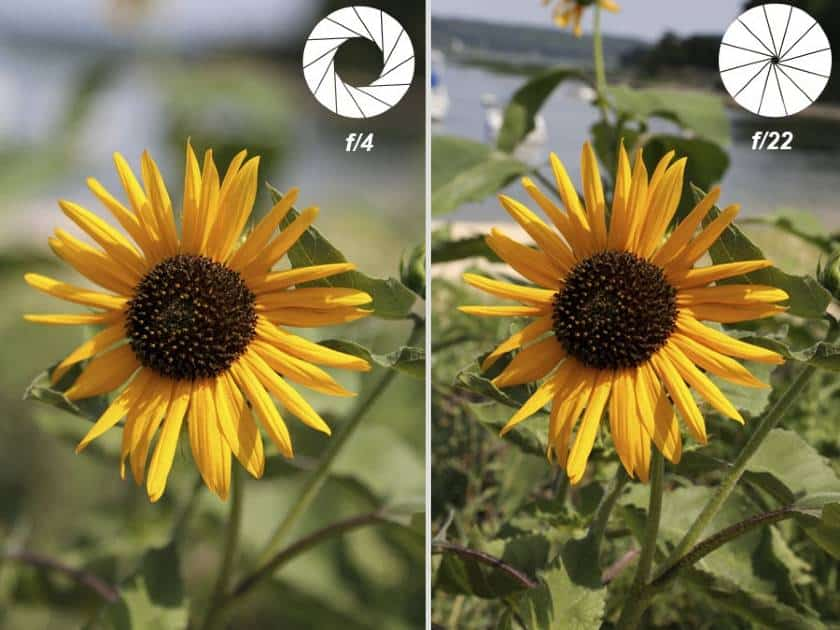 Example of Depth of field Low and High Aperture