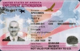 Screenshot of Employment Authorization Card