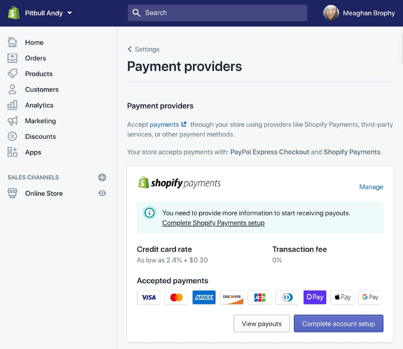 Screenshot of Payment Providers on Shopify