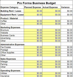 Pro Forma Business Budget