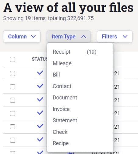 Screenshot of NeatFiles Filter Items based on Item Type