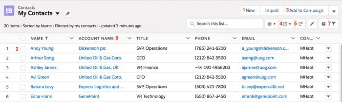 Screenshot of Salesforce Contact List View