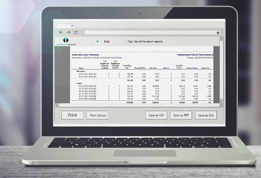 Screenshot of Harbortouch Report on a Laptop
