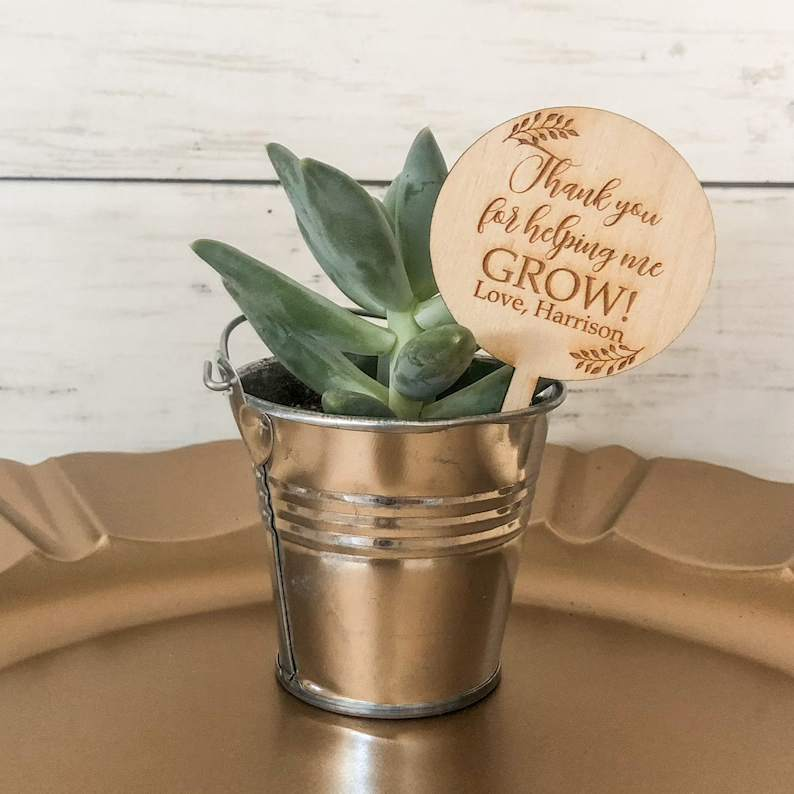 Screenshot of Potted Plant